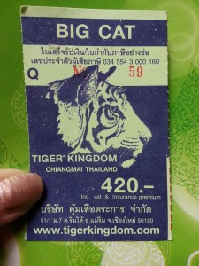 tiger ticket