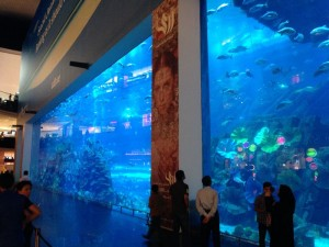 Excess at it's finest: The aquarium in the Dubai Mall.