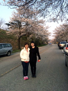 No springtime trip is complete without cherry blossoms!
