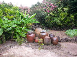 Clay pots, used for storage of fermented dishes like pickled cabbage and turnips.