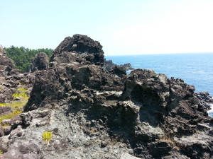 A close up of the black lava rocks.